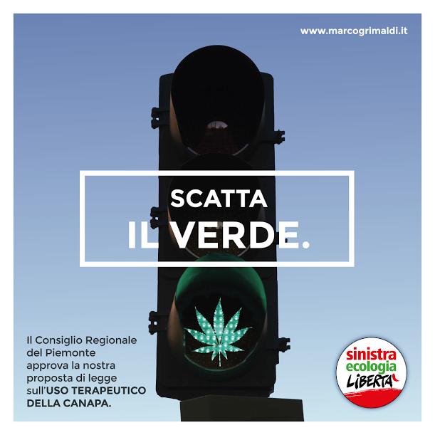 """Cannabis, via libera all'uso terapeutico in Piemonte. """"Sarà prescritta dai medici"""""""